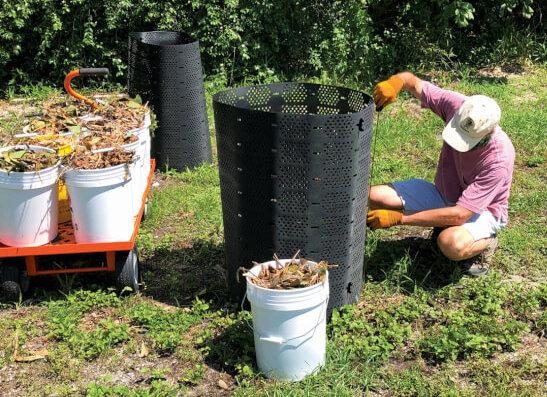 University of Florida Sargassum Research